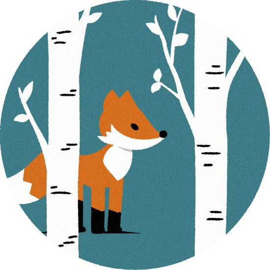 Rond Vloerkleed Kinderkamer : Bol rond kinder vloerkleed tapijt mat kinderkamer vos