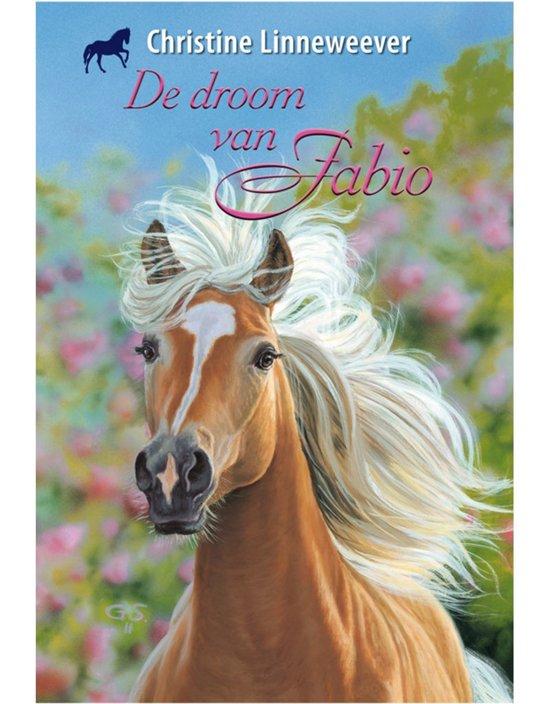 Bol Com Gouden Paarden De Droom Van Fabio Christine