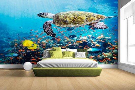 FotoCadeau.nl - Schildpad bij koraalrif Fotobehang 380x265