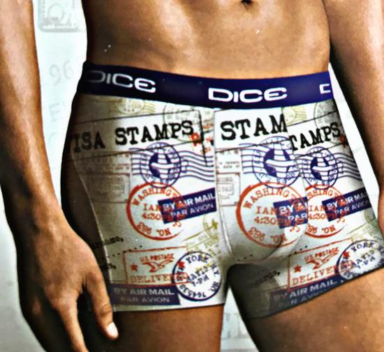 DICE Underwear Heren Boxer all over print Stamp/Visa, kleuren mix, maat XXL