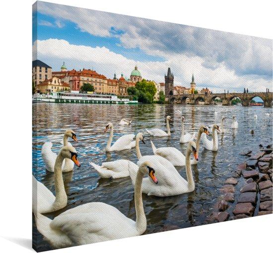 Het stedelijke landschap van Praag met zwanen in de rivier de Moldau Canvas 60x40 cm - Foto print op Canvas schilderij (Wanddecoratie woonkamer / slaapkamer)