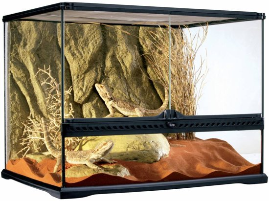 Exo Terra Glasterrarium Medium Laag