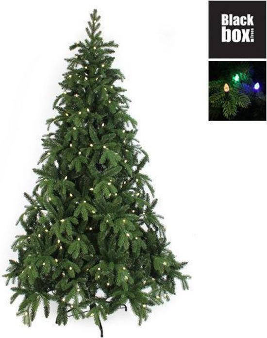bol.com | Black Box Brampton Spruce - Kunstkerstboom 215 cm hoog ...