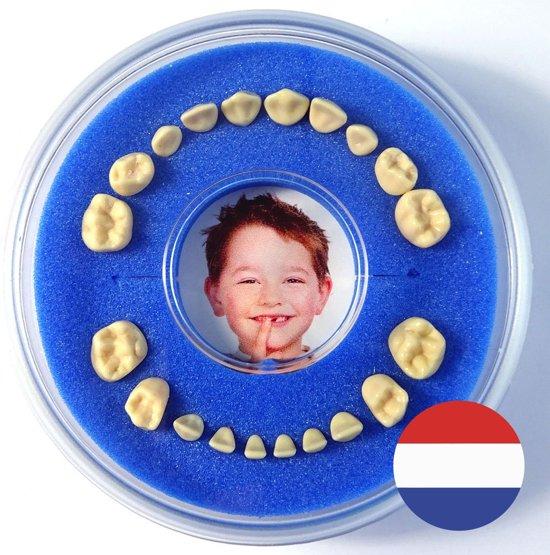 Voordelige set 2x Tandendoosje - blauw/blauw - meisje/jongen - NL Tekst - inclusief koelkastmagneten - Gratis verzending elke DI en VR (besteld vóór 13.30)
