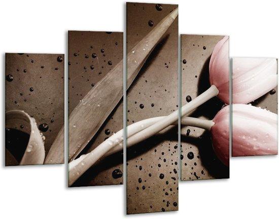 Glasschilderij Tulp | Bruin, Grijs, Wit | 100x70cm 5Luik | Foto print op Glas |  F002515