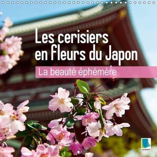 Bol Com Calvendo Beaute Ephemere Les Cerisiers En Fleurs Du Japon