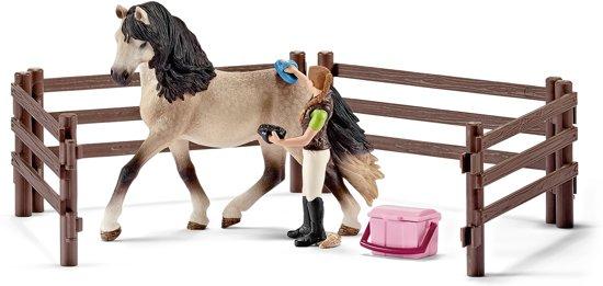 Paardenverzorgingsset Andalusiër