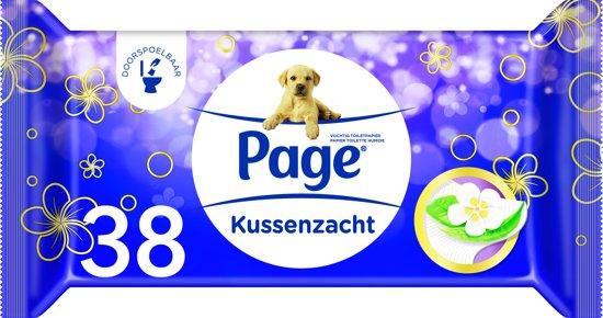 Page Vochtig Toiletpapier.Page Kussenzacht Vochtig Wc Papier 12x38 Stuks