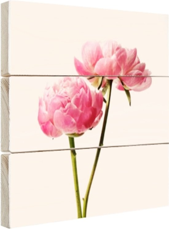 Roze Bloesem Hout 120x80 cm - Foto print op Hout (Wanddecoratie)