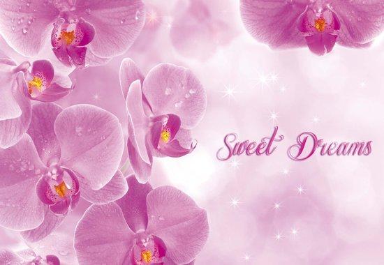 Fotobehang Flowers Orchids Pink | XL - 208cm x 146cm | 130g/m2 Vlies