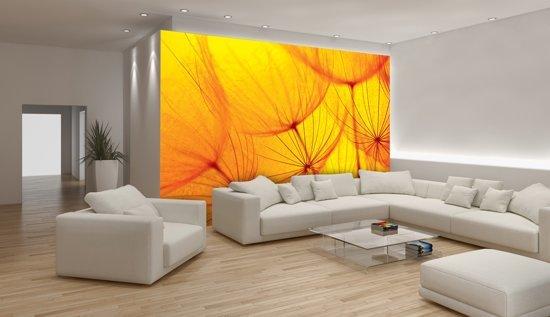 Fotobehang Papier Abstract | Geel, Oranje | 254x184cm