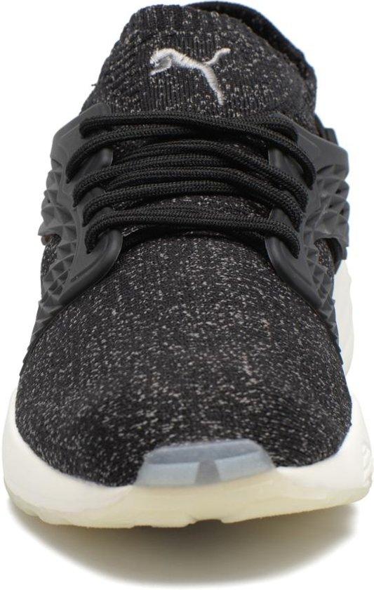 Cage Evoknit 42 Blaze Maat Unisex Puma Zwart Sneakers BWnOazqwE