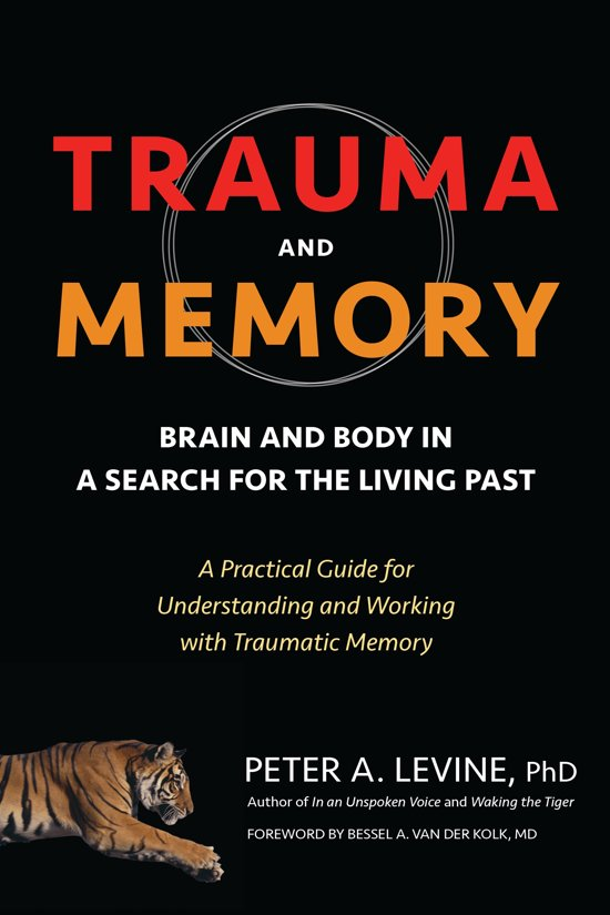 Boek cover Trauma And Memory van Peter A. Levine, Ph.D. (Paperback)