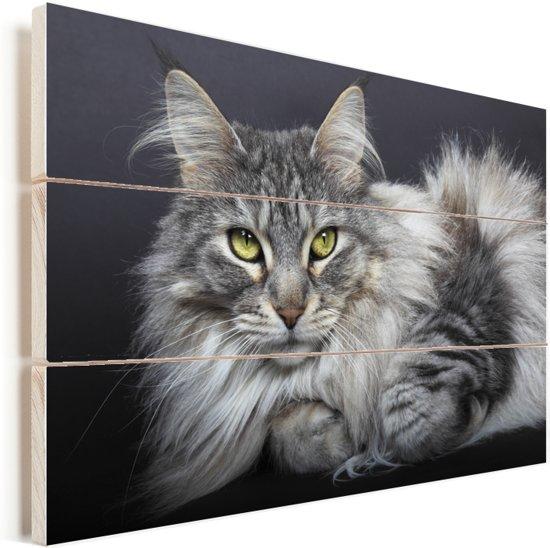 Een mooi liggende Maine Coon kat Vurenhout met planken 90x60 cm - Foto print op Hout (Wanddecoratie)