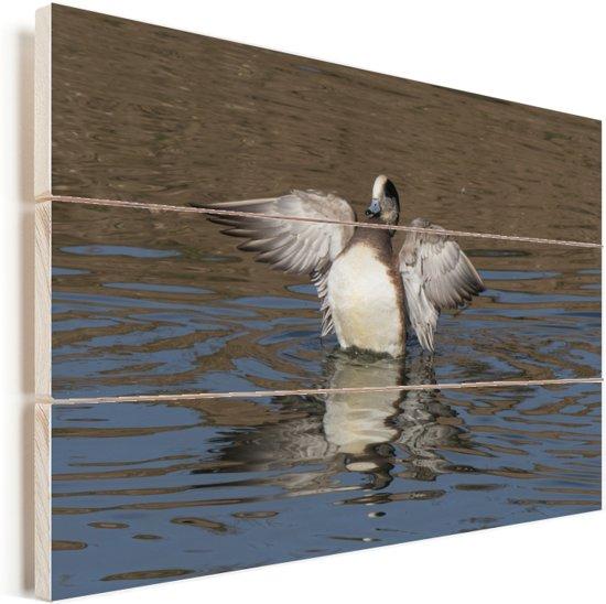 Mannelijke smient toont de witte borst op het water Vurenhout met planken 30x20 cm - klein - Foto print op Hout (Wanddecoratie)