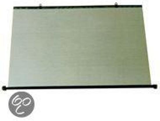 bol.com | Auto Gordijn - Zonnescherm auto - 57 x 110 cm- Carpoint