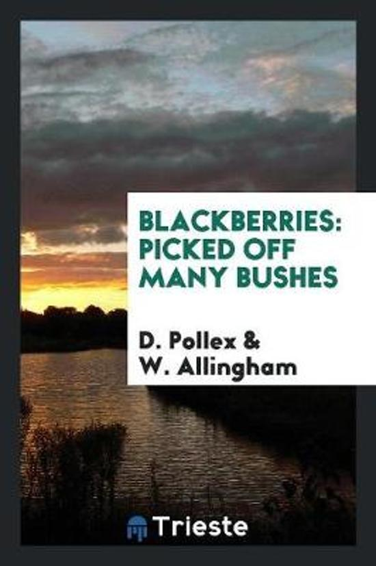 Blackberries Picked Off Many Bushes