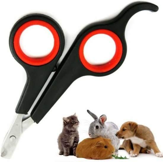 Nagelschaar - Nagelschaartje - Nagelknipper - Geschikt voor Hond Kat Konijn Cavia Vogel