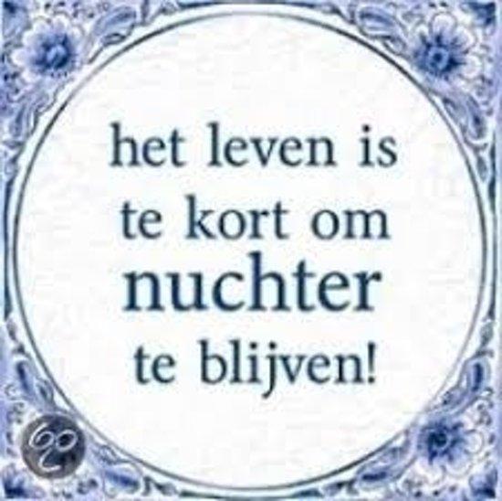 Delfts Blauwe Spreukentegel Het Leven Is Te Kort Om Nuchter Te Blijven