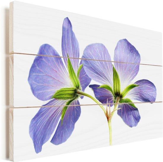 Paarse geranium bloemen close up Vurenhout met planken 90x60 cm - Foto print op Hout (Wanddecoratie)