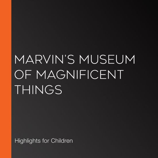 Marvin's Museum of Magnificent Things
