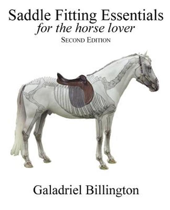 Saddle Fitting Essentials