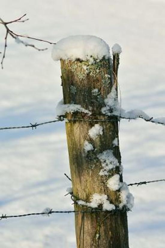 Bolcom Rustic Wooden Fence Post In The Snow Country Life Journal