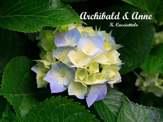 Archibald & Anne (Short Story)