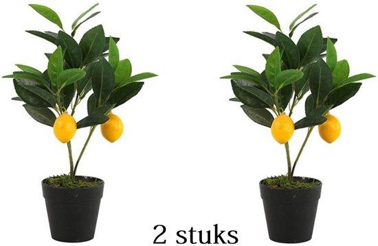Citroenboom Kunstplant 30 cm 2 stuks