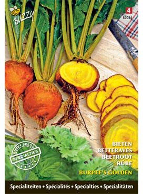 Bieten Burpees Golden (special) Beta vulgaris - set van 5 stuks