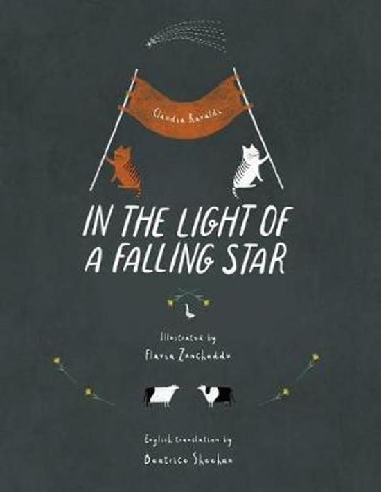 In the light of a falling star
