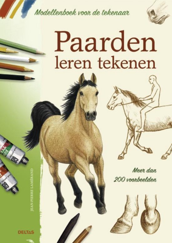 Paarden leren tekenen