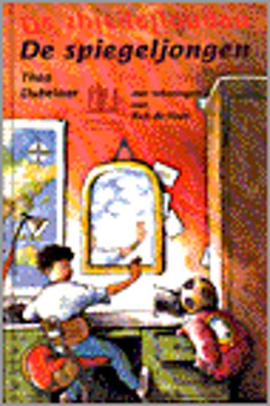 De spiegeljongen - Thea Dubelaar pdf epub