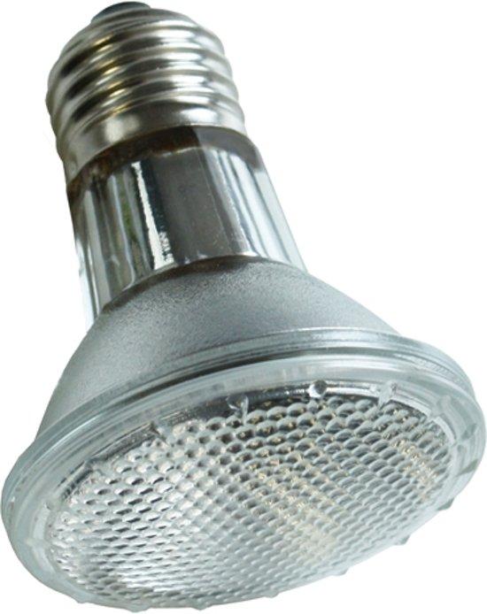 Komodo Halogeen Spot Lamp - ES 50 Watt