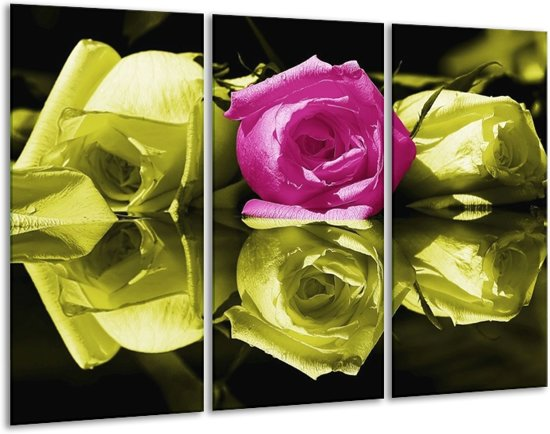 Canvas schilderij Roos   Paars, Groen, Wit   120x80cm 3Luik
