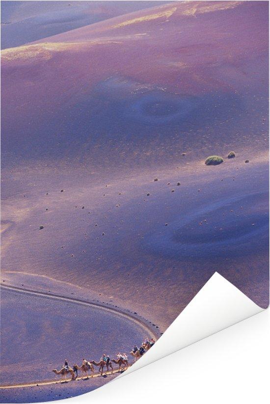 Luchtfoto van kamelen in het Nationaal park Timanfaya op Lanzarote Poster 60x90 cm - Foto print op Poster (wanddecoratie woonkamer / slaapkamer)