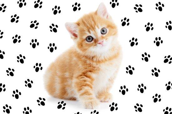 Onwijs bol.com | Papillon voerbak dieren placemat Polyester Kitten OY-81
