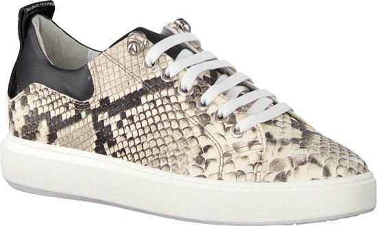 | VERTON Dames Sneakers 0030 Beige