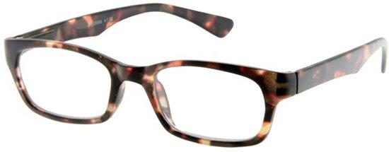 Leesbril INY Fab G35900 havanna/bruin