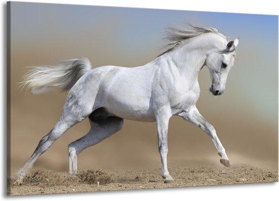Uitgelezene bol.com | Canvas schilderij Paard | Wit, Grijs | 140x90cm 1Luik VH-91