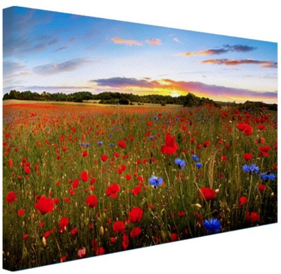 Wanddecoratie Op Canvas.Tuin Van Eden Canvas 60x40 Cm Foto Print Op Canvas Schilderij Wanddecoratie Woonkamer Slaapkamer Bloemen Canvas Schilderijen