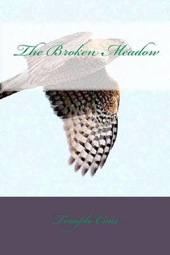 The Broken Meadow