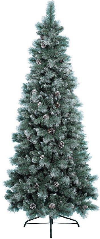 bol.com   Everlands - Norwich Pine Frost - Kunstkerstboom 150 cm ...