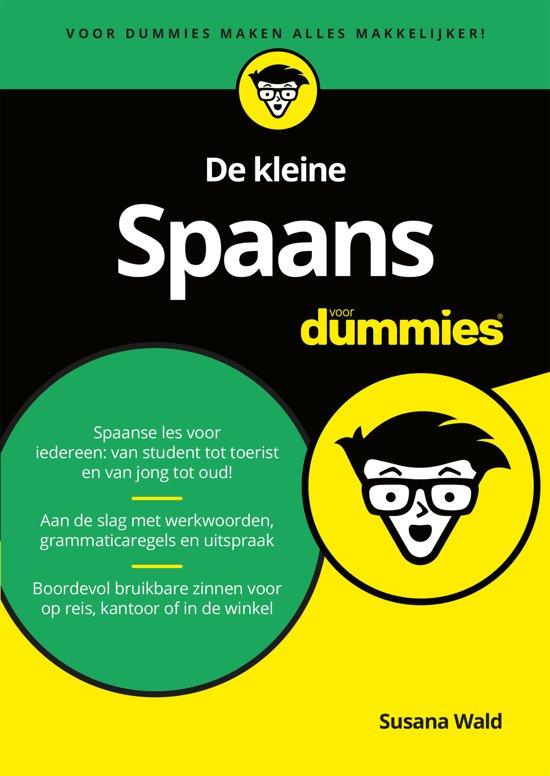 De kleine Spaans voor Dummies