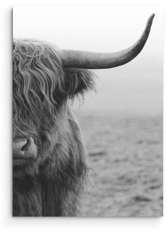 Schotse Hooglander  - Schilderij 60 x 90 cm - highlander - wanddecoratie - muurdecoratie