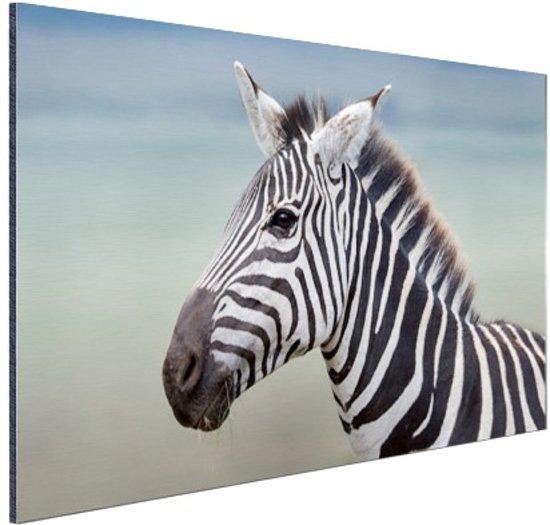 FotoCadeau.nl - Zebra portret  Aluminium 120x80 cm - Foto print op Aluminium (metaal wanddecoratie)