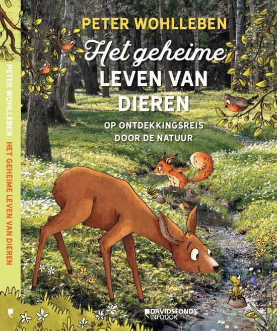 9200000114281318 - Boeken die jou en je kinderen stimuleren om de natuur in te trekken & creatief aan de slag te gaan