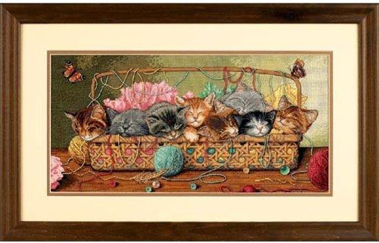 borduurpakket 35184 kittens in mand