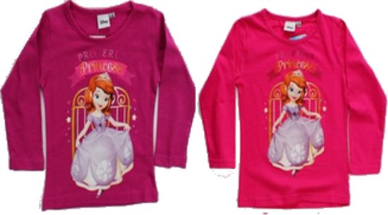Disney Sofia Princess longsleeve maat 110 - 1 stuk
