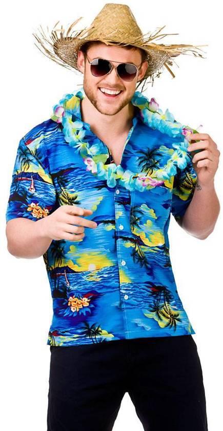 e37d82967ac bol.com | Hawaii shirt heren, Merkloos | Speelgoed